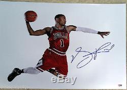 Chicago Bulls Derrick Rose Signed Auto 16x20 Metallic Photo Psa/dna Coa. Photo 1
