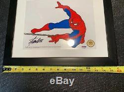 Spider-Man Deluxe signed Stan Lee Animation Cel framed Marvel With PSA/DNA COA